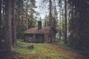 Haftpflicht Jagd Hütte Wald